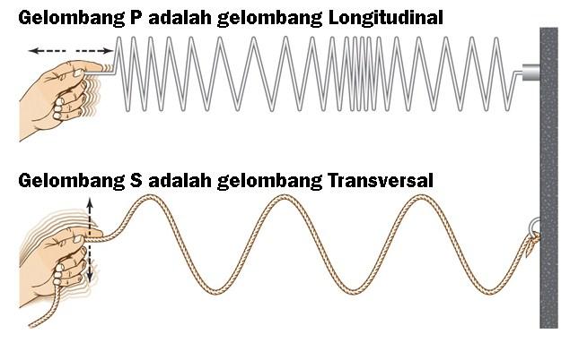 Penjelasan Gelombang Transversal dan Longitudinal