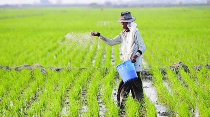 Pengertian Pertanian Dan Usaha Peningkatan Hasil Produksi Pertanian
