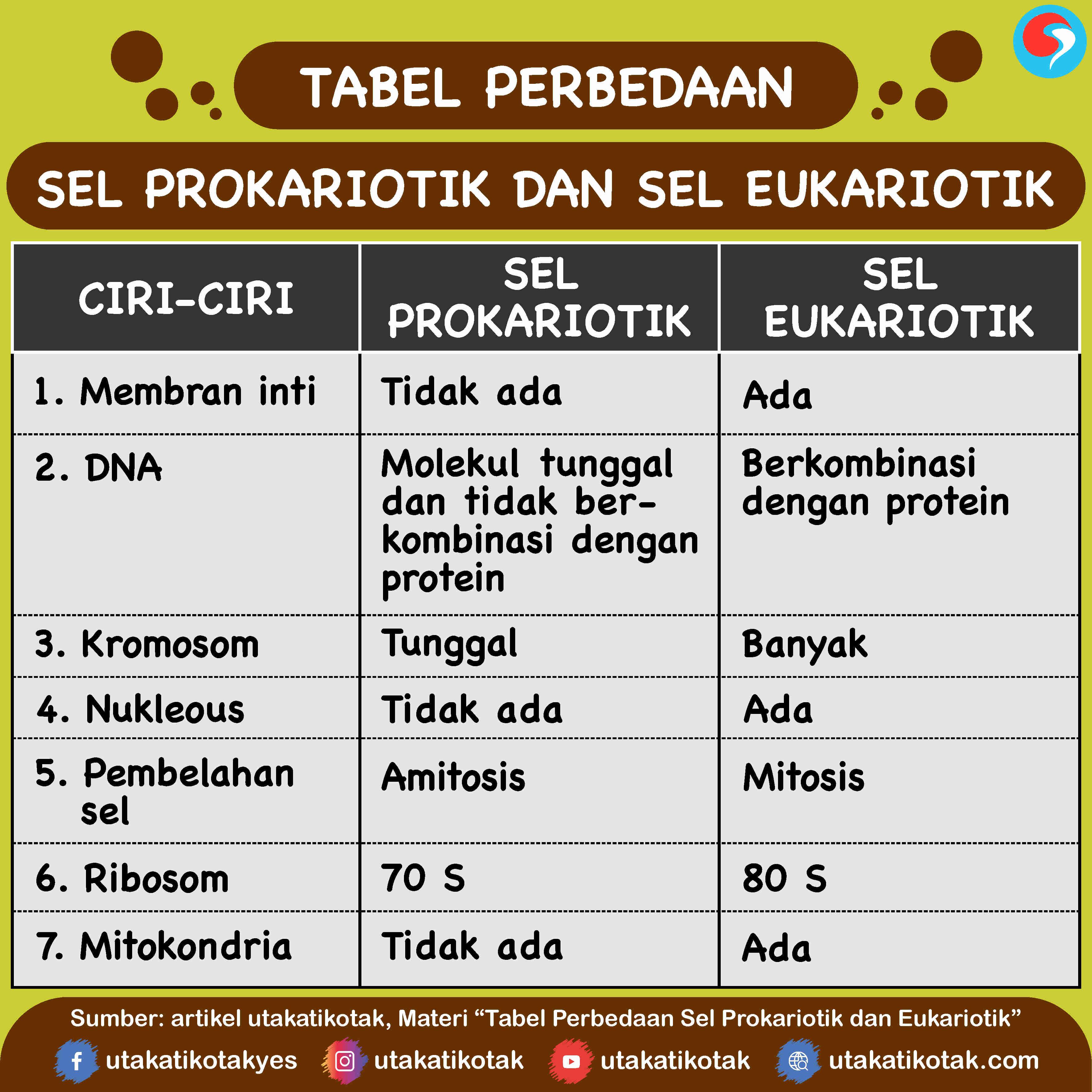 Tabel Perbedaan Sel Prokariotik Dan Eukariotik