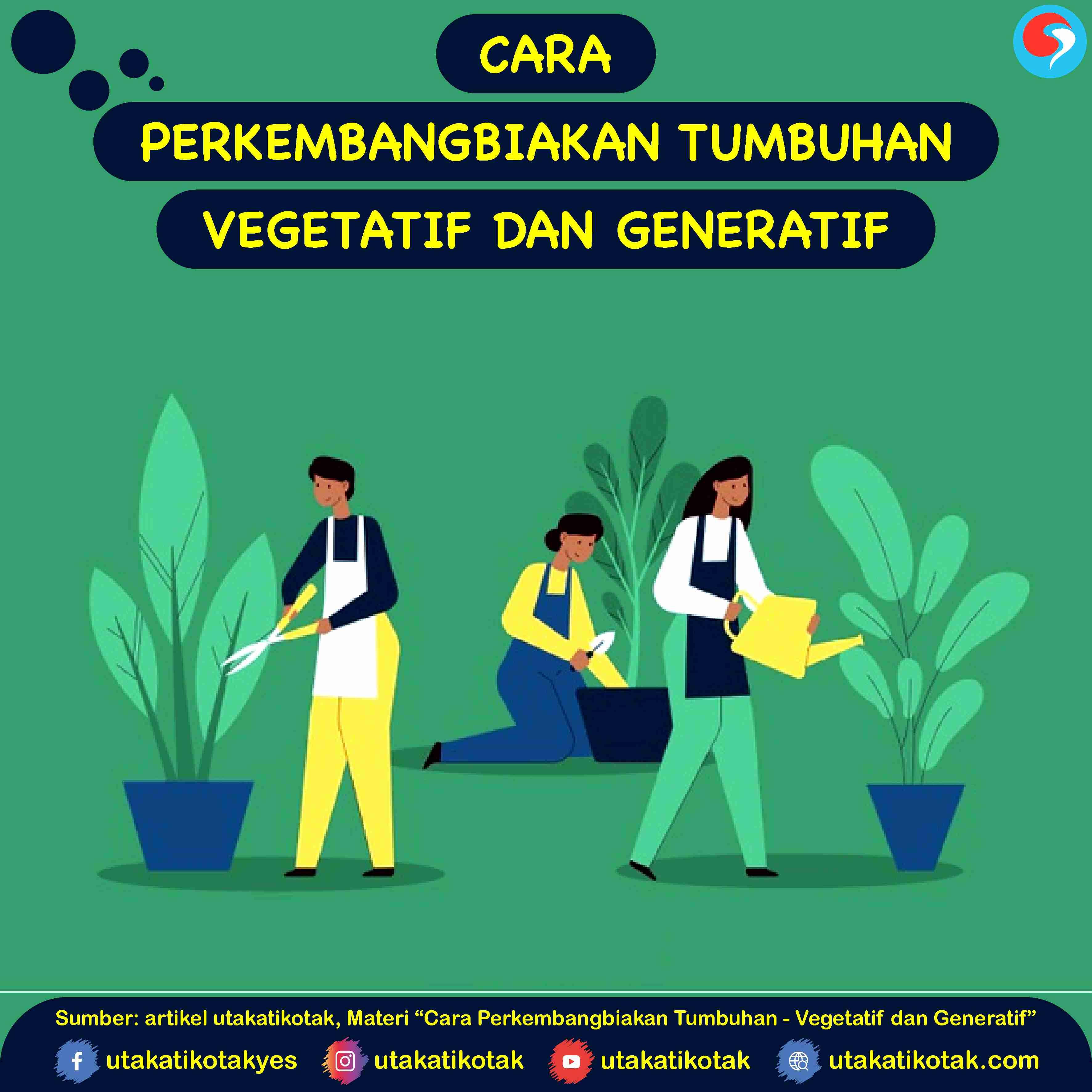 Cara Perkembangbiakan Tumbuhan Vegetatif Dan Generatif